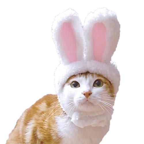 Kostüm Katze Der Hut Auf - Legendog Katze Hut Hase Ohren Hund Deckel Haustier Hut Haustier Kostüm zum Ostern Cosplay