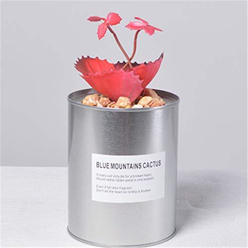 Tzzorydecoration nordic vento lattine simulazione cactus ornamenti in vaso più carne falso bonsai negozio ristorante ornamenti gioielli pianta verde