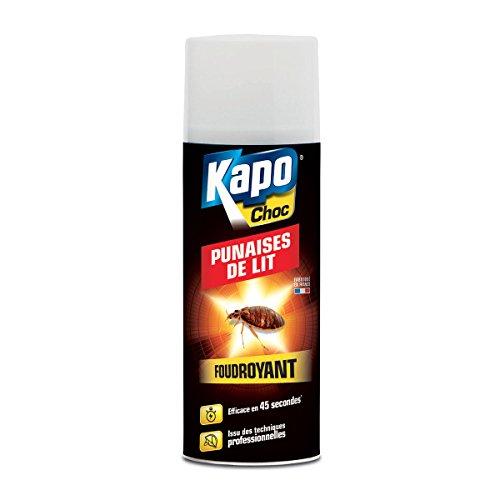 aerosol-punaise-de-lit-foudroyant-400-ml