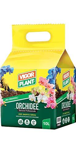 terriccio per orchidee da 10 lt