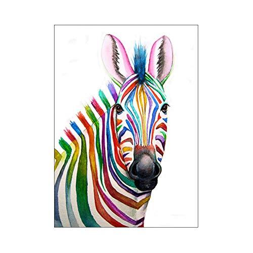 Coomir 25 * 30 cm Colorful Zebra Diamond Kit Pintura