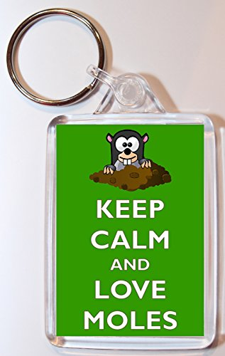 keep-calm-and-love-moles-double-sided-large-keyring-gift-present-souvenir
