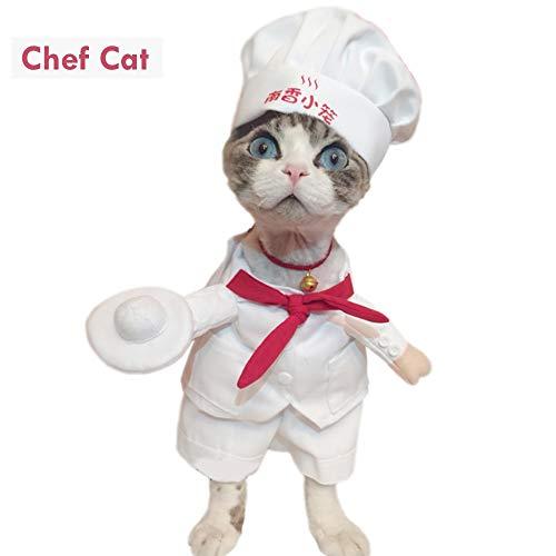 7°MR Hundekleidung Lustige Haustier Kostüme Sternekoch Cosplay Anzug Koch Katze Bekleidung Outfit Kleidung für Welpen Hund Kostüm für eine Katze 宠物 宠物 Kleidung für Haustiere (Color : 1, Size : S)