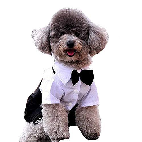 AMURAO Winter Hund Kleidung Mantel, Katze Kleidung Prinz Smoking Fliege Anzug Welpen Hochzeit Kostüm Overall -