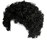 Black Malinga Wig ,CURLY AFRO WIG (Black) COLOUR PARTY CLOWN FUNKY DISCO MENS LADIES 70S FANCY DRESS
