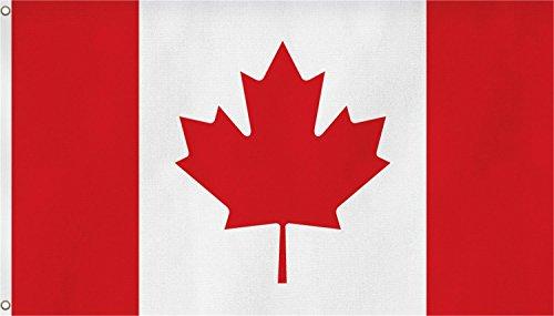 normani XXL Flagge Fahne, genäht in 150 x 250 oder 300 x 500 cm Farbe Kanada Größe 150x250 (Kanada-stoff)