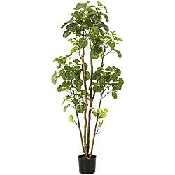 artplants Set 2 x Kunst Polyscia FILARO, 280 Blätter, grün-Creme, 160 cm - Künstliche Zimmerpflanzen/Deko Pflanzen
