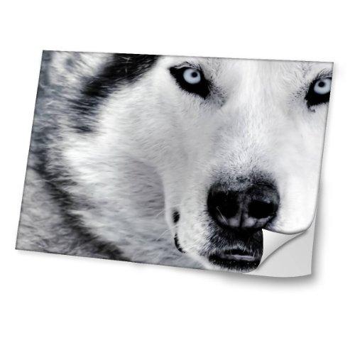 chiens-10021-husky-autocollant-vinyl-adhesif-dessin-colore-et-effet-de-cuir-pour-les-portable-tactil