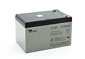 Yuasa - Batterie plomb AGM Y12-12FR 12V 12Ah YUCEL - Batterie(s)