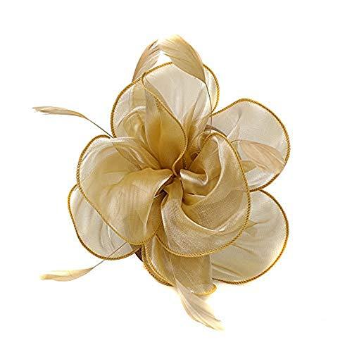 Beonzale Fascinators Hut für Frauen Tea Party Stirnband Derby Hochzeit Cocktail Haarspange Stirnband Blumen Schleier Blume Hüte HaarZusätze