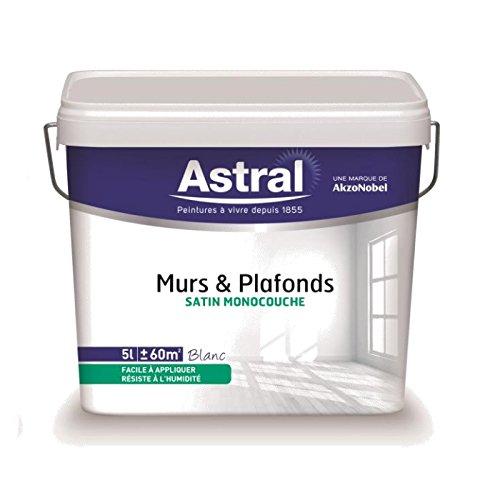 astral-5212019-peinture-pour-murs-plafonds-monocouche-5-l-1-l-satin