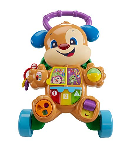 Fisher-Price First walker, baby ride +6 mois (Mattel FRC85)