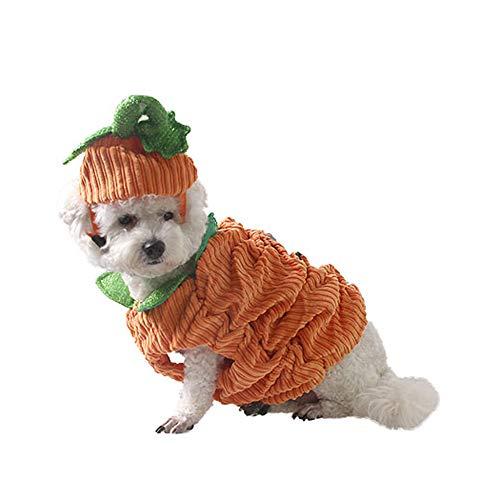 Süßeste Hund Halloween Kostüm - LAMF Hunde-Kostüm für Halloween, Kürbis-Kostüm, für