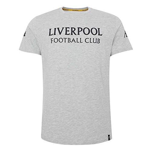 26818e49f4a98 New Balance Liverpool FC 2019/20 Playera de Viaje con gráfico S/S para  Hombre, Hombre, MT931026, Gris Claro, XX-Large