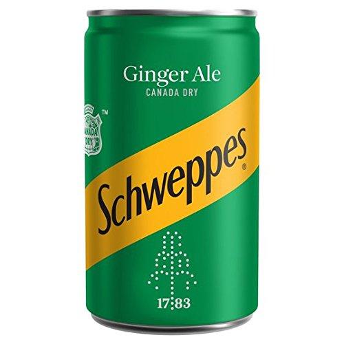 Schweppes Canada Dry Ginger Ale Mini Kann 150ml