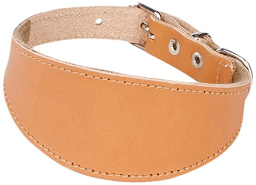 Dingo Collar de Piel Whippet