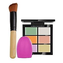 Rrimin Professional Cosmetic 6 Color Cream Contour Palette Kit Pro Concealer Face Makeup Palette Multi-Style Optional (Palette+Brush+Brush Egg Tool 01)