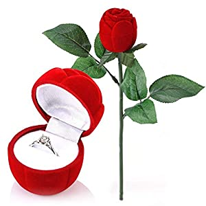 Rosa Forma Caja, NALCY Caja