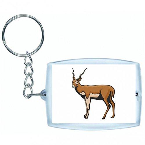 Druckerlebnis24 Schlüsselanhänger Büffel galoppiert stolz Afrika Wildnis Freiheit Dschungel in Weiss | Keyring - Taschenanhänger - Rucksackanhänger - Schlüsselring -