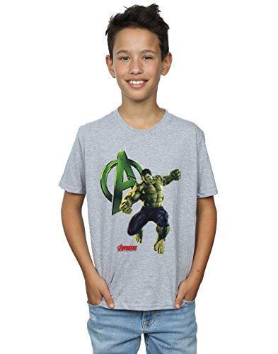 0d004dac52d Hulk-sports al mejor precio de Amazon en SaveMoney.es