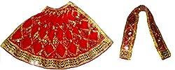 FABLOOK RED Embroided Sherawali Vaishno Devi Durga Mata Lehenga Chunni Dress/ Vastra/ Poshak