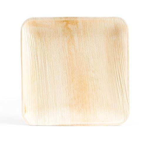 Premium Palmblatt Teller quadratisch   Einwegteller   Bio Einweg Geschirr   Palmblattgeschirr   25 Stück   20 x 20 cm   100% biologisch abbaubar und kompostierbar   umweltfreundlich und stilvoll