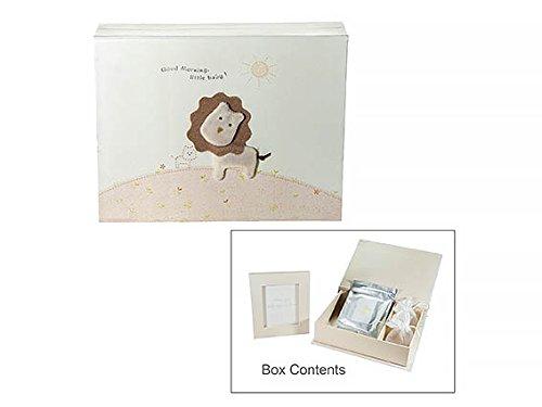 Scatola dei ricordi con leone disegnato e libro porta ricordi, diario libretto come set regalo per neonati o neonate