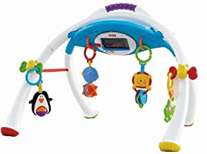 Fisher-Price iPhone Apptivity Gym