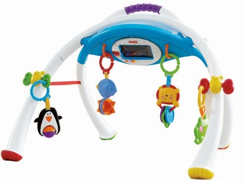 Mattel Fisher-Price Y4476 - Apptivity Gym, Spielbogen