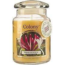 Colony - Candela grande in barattolo, fragranza: