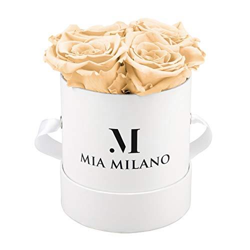 Mia Milano ® Rosenbox mit Infinity Rosen (Versand in neuer stabiler Kartonage) Flowerbox mit konservierten Blumen | 3 Jahre haltbar (Medium - Champagner)