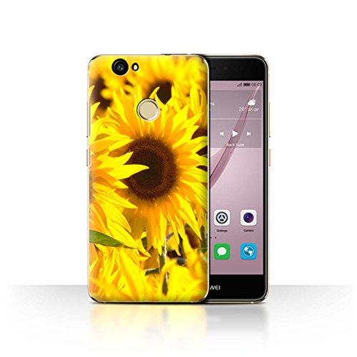 Custodia/Cover/Caso/Cassa Rigide/Prottetiva STUFF4 stampata con il disegno Fiori del giardino floreale per Huawei Nova - Girasoli
