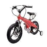 Kinderfahrräder Junge Mit 3-6-8-jährigen Jungen Studentenfahrrad Sport Mountainbikes Mädchen Fahrrad Dreirad Für Kinder (Color : Red, Size : 12inches)
