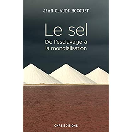 Le sel. De l'esclavage à la mondialisation (Histoire)