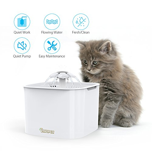 Zoom IMG-1 dadypet fontanella per gatti fontana