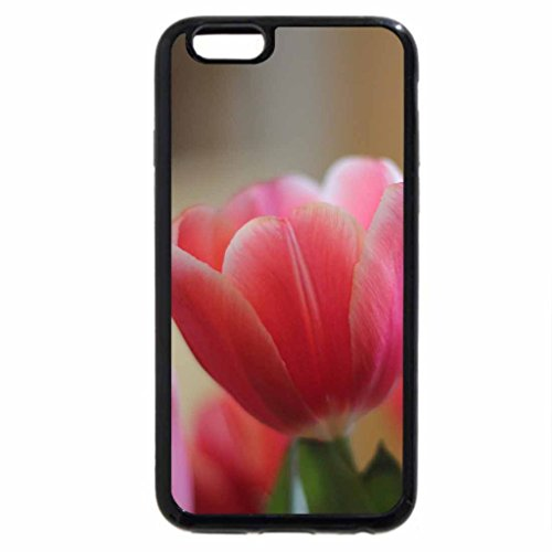 iPhone 6S Case, iPhone 6 Case (Black & White) - Blooming In The Spring Light
