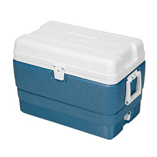 Igloo 385-13018 50 Qt Maxcold Ice Blue
