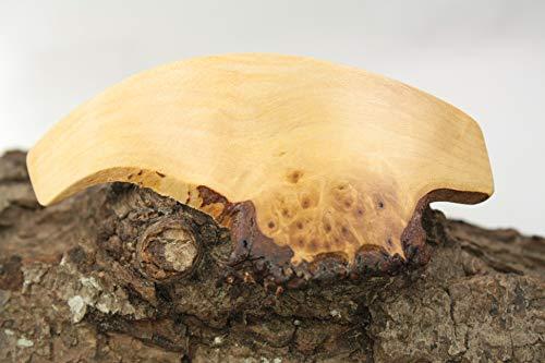 Haarspange / 70mm / marmorierte Birke/Super Einzelstück !