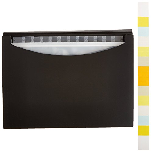 AmazonBasics Expanding File Folder, Letter Size (Fits A4 Paper) - Black - with 13 pockets