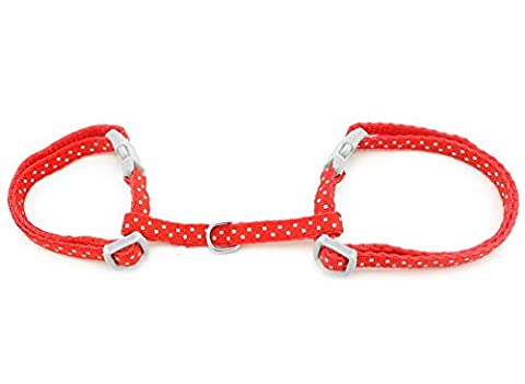 Ranphy Petit jouet pour chien Chaton Collier Harnais réglable Halter Pet Marche Laisse Pois