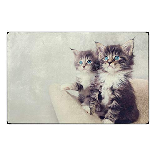 FAJRO Schmutzfangmatte mit Katzenmotiv, Polyester, rutschfest, für drinnen und draußen, Polyester, 1, 31 x 20 inch