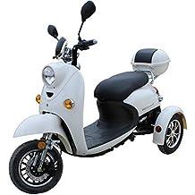 Elegante Retro Scooter Electrico 3 ruedas adulto Movilidad Reducida Minusválido para Mayores Vespa Recreativo 25 km