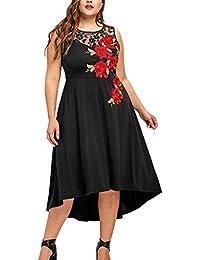 13b65cdc26 DOLLAYOU Women Sexy Plus Size O-Neck Appliques Zipper Perspective Lace  Sleeveless Mesh Dress Summer