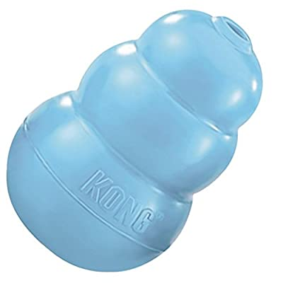 Kong Puppy Treat Toy (Assorted Colours)