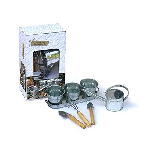 Clémentine Créations-Herramientas de jardín Kit de cultivo 8piezas: regadera, herramientas y Mini Pots Cinc