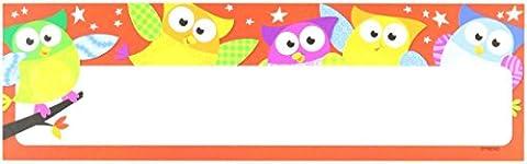 Trend Enterprises Inc. T-69910 Owl Stars Desk Toppers Name Plates