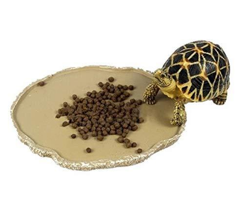 Nicedeal Cuenco de alimentación en Resina Bebedero para terrarios Reptile Tortoise Gecko 2home Deco