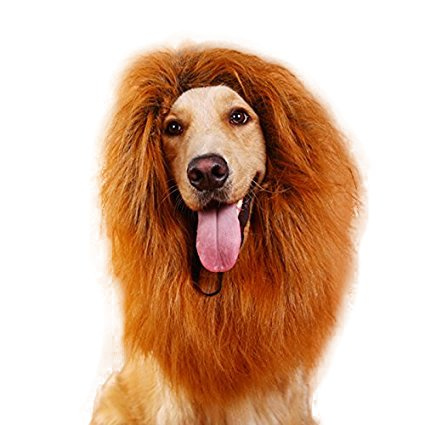 Pet Dog Lion Wigs Mane Dog Costumes Dog Hair Party For Dogs With Ears Festival Fancy Dress up Lion Mane Wig Halloween Costume Medium/Large Dogs