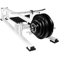 Preisvergleich für Bad Company Rudergerät I Indoor Rowing Machine mit T-Bar I Rudermaschine für das Ganzkörpertraining - Weiß I BCA-22