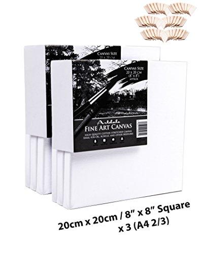 artdale 6Pack Standard Edge 17mm gerahmt blanko Pre gespannt Leinwände, dreifach grundiert weiß 20cm x 20cm/20,3x 20,3cm quadratisch Holz Rahmen 100% Baumwolle Student/Künstler Art Leinwand Öl Acryl & mehr